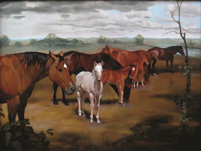 Foals and Mares Adrian Martinez